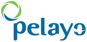 logo_pelayo-300x147