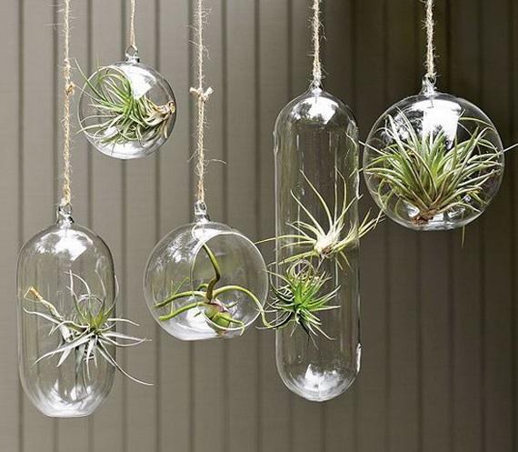 12 bonitas formas de decorar la casa con plantas de interior