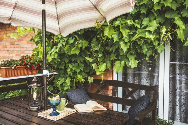 mejores-diy-para-decorar-el-jardin-paraguas-sombra-istock