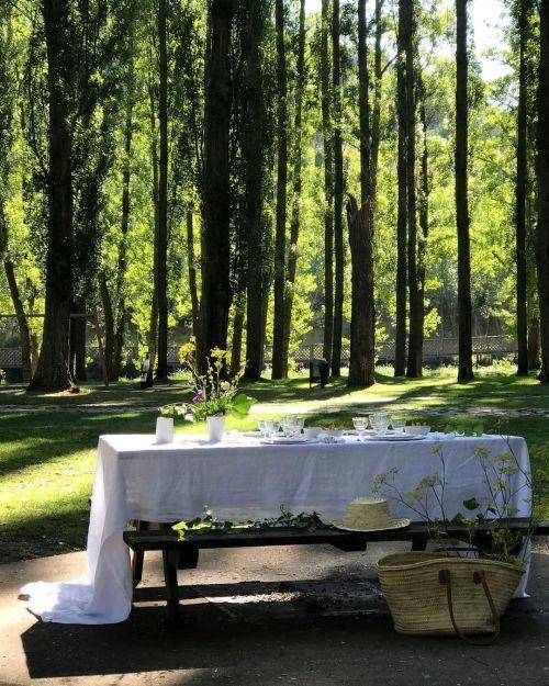 Mesa decorada en el bosque