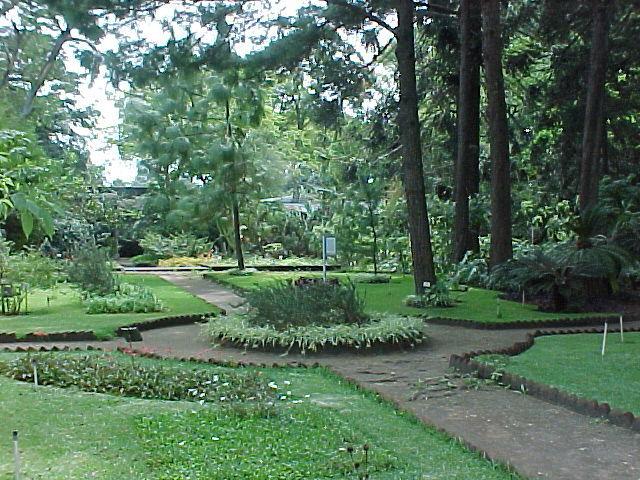Decorando el jard n siguiendo al feng shui for Decorando el jardin