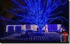 christmas_lights_video