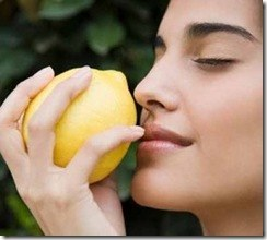 limon_cara-300x270