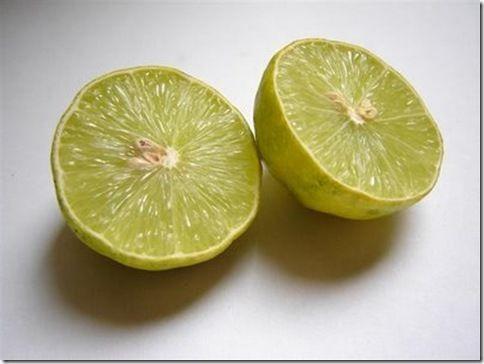 20060424183345_limones