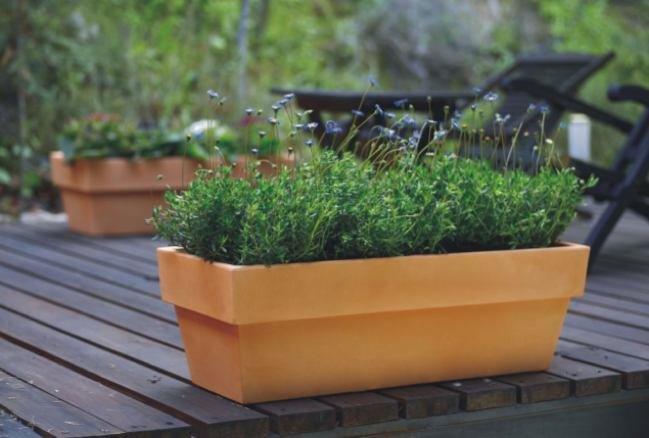 Las plantas de la terraza en invierno - Plantas terraza ...
