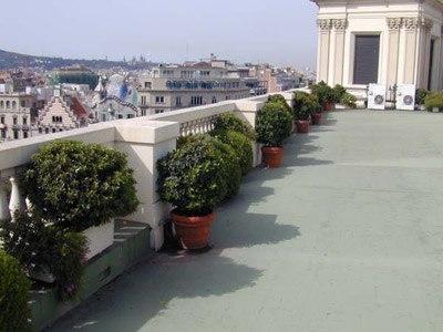 terraza_plantas-g