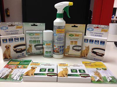 Prevenci n de plagas en casa te damos unos simples - Como eliminar las pulgas de casa remedio casero ...