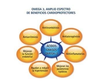 acidos-omega-3_thumb.jpg