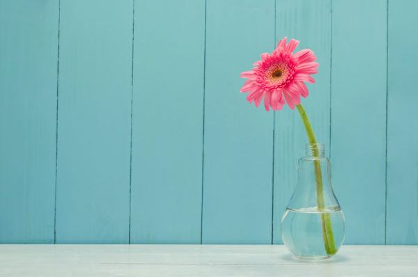Jarrones con flores bombilla