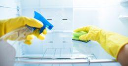 Cómo limpiar una nevera a fondo paso a paso