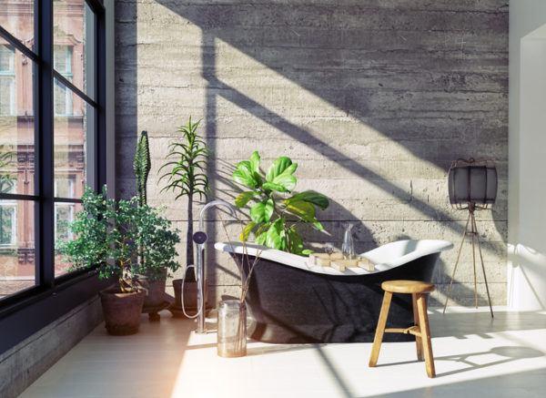 Baño rustico bañera patas