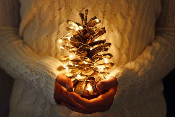 Piñas naturales Navidad